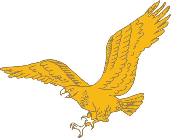 Gold Eagle Contracting, Inc.